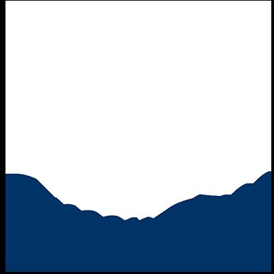 QueenBees